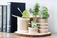 How-to-make-cute-succulent-planters-from-recycled-tin-or-aluminum-cans